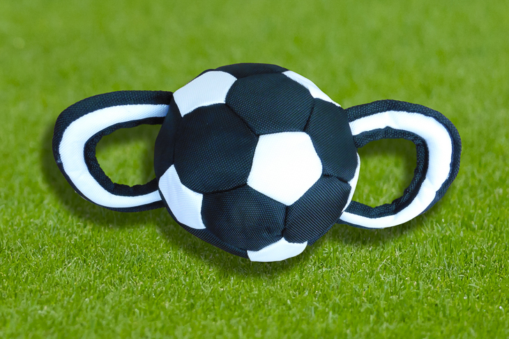 So sieht der neue Ball für die Landesliga und die Verbandsliga der Frauen aus. (Foto: Oliver Baumgart)