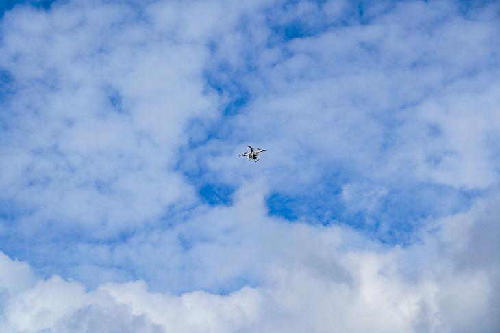 Drohnenbilder sollen bei der Auswertung helfen. (Foto: David Dischinger)